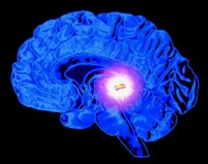 The Pineal Gland, our Third Eye
